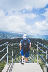 A Walk to the Unknown (Kou Thao) Tags: animals nature wildlife hawaii scenery photograhy kokohead adventure vintage vibes tropical airplane sky sunset clouds traveler luau horse jungle