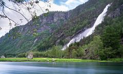 Vidfoss (dan.kristiansen) Tags: vidfoss foss waterfall odda hardanger norway norge water river elev vann sheep mountains fjell longexposure langeksponering