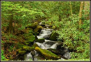 Mountain Waterfall - Explore #45
