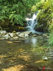 P1220501.jpg (ravdsterren) Tags: long exposure sluitertijd waterval irrel germany lumix gh3 mirrorless nature