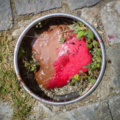 (Brînzei) Tags: arthurverona autoyashinondx50mmf14 bucurești centrulvechi m42 sonya7 tomioka brown chocolate crap icecream manualfocus pink round squareformat
