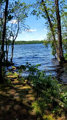 Franklin Lakes Nature Preserve (SurFeRGiRL30) Tags: franklinlakesnj naturepreserve franklinlakesnaturepreserve newjersey nj lake beautiful serene summer 2017 trees nature blue green rocks