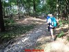"""2017-06-21           Het Gooi  1e  dag  31 Km   (21) • <a style=""""font-size:0.8em;"""" href=""""http://www.flickr.com/photos/118469228@N03/34688491704/"""" target=""""_blank"""">View on Flickr</a>"""