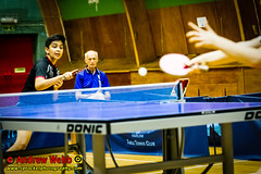 BATTS1706JSSb -520-144 (Sprocket Photography) Tags: batts normanboothcentre oldharlow harlow essex tabletennis sports juniors etta youthsports pingpong tournament bat ball jackpetcheyfoundation
