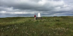 25 of 52 trig points (Ron Layters) Tags: 2017 ronlayters selfportrait 52trigpoints blackhill trigpoint holmemoss soldierslump cottongrass amomentofsunshine moor clouds badweather tooleyshawmoss light summit green moorland pillar tp13980 fbs2958 peakdistrict peakdistrictnationalpark saddleworth crowden derbyshire england unitedkingdom 52weeks 52 phonecamera iphone apple appleiphone6 selftimer tripod 10secondtimer weektwentyfive week25 25