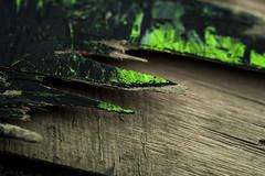 Snapped (niKonJunKy22) Tags: macromondays broken snapped skateboard skateboarding skate green black wood sharp grain nikon d700 dark spike deck macro tamron 90mm hmm