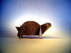 Tortue de terre (Tortoise) - Barth Dunkan (Rui.Roda) Tags: origami papiroflexia papierfalten tortuga tartaruga tortue de terre tortoise barth dunkan
