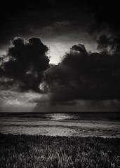 Sunset No. 8 @ Pescadero State Beach B&W