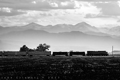 Evening Along the Front Range (Colorado & Southern) Tags: bnsfrailway bnsfes44c4 gees44c4 manifest manifesttrain railfanning railroad railfan railway railroads rockymountains railroading rail rr colorado coloradorailroads coloradotrains frontrangesub foothills