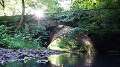 Valley Bridge (Mark BJ) Tags: daisynook countrypark rivermedlock uk manchester oldham valleybridge sunburst illuminate brickwork plants reflection ashtonunderlyne bardsley tree leaves rocks pebbles early morning summer