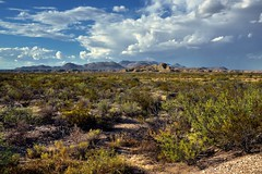 Blue Skies and Clouds Above the Rosillos Mountains (Big Bend National Park)