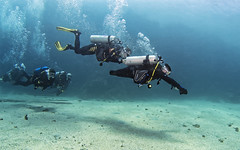 20_06a (KnyazevDA) Tags: diver disability disabled diving undersea padi paraplegia paraplegic amputee egypt handicapped wheelchair aowd sea travel scuba underwater redsea