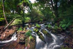 Muiños de Verdes, Coristanco. A Coruña (durandarte) Tags: verdes coristanco coruña galicia españa spain nature naturaleza agua water bosque wood