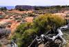 Utah Canyonland (cong2014yan) Tags: utah landscape canyonland moab
