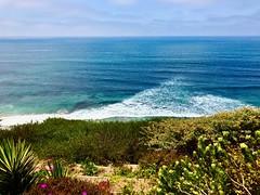 Rolling Breakers Foam (Chic Bee) Tags: sunshine gardenpath exquisite garden clifftop cliffhanger oceanswhitewithfoam spectacular splash water oceanview vacation california encinitas cardiffbythesea breakers foam pacificocean