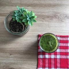 Smoothie vert!!! Fanes de radis et brugnon jaune! 👍 #smoothie #green #drink #drinks #slurp #withers #radish #nectarine #yum #yummy #cocktail #cocktails #drinkup #glass (angelsansailes) Tags: smoothie green drink drinks slurp withers radish nectarine yum yummy cocktail cocktails drinkup glass