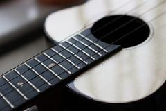 誠意之作 (MusicPancake) Tags: musicalinstrument wood strings fretboard soundhole swissmoonspruce indianrosewood soundboard sound anuenue moonbirdut200 ukulele 烏克麗麗