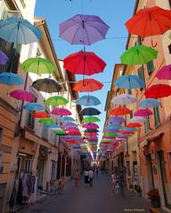 Ombrelli volanti a Pietrasanta (Darea62) Tags: umbrella street versilia colors pietrasanta tuscany town people showcase shops pavement ombrelli