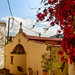 Bougainvillea and Greek Orthodox Church