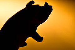 Pigs will fly - HMM! (Barrie T) Tags: macromonday silhouette