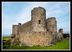 Harlech Castle (veggiesosage) Tags: wales harlech castle aficionados gx20 sigma1020mmf456dc