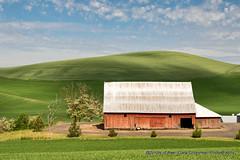 Red Barn (Gary Grossman) Tags: palouse barn redbarn red garygrossmanphotography garygrossman spring landscape pacificnorthwest farm washington clouds