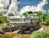 With each week that passes... The Miss Savannah II (thepres6) Tags: shrimpboats savannah georgia wood water rail trees sky old reflection brunswick