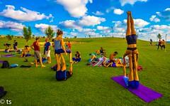 Playground (tchia sheffer) Tags: playgroundacrobatgrasskycloudsyoungpeople