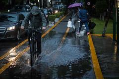 2 - Huyendo a casa bajo la lluuvia - 14Jun17 (oemilio16) Tags: cdmx ciudad de méxico lluvia rain raining canon umbrella paraguas sombrilla agua street calle streetphotography lloviendo t6 1300d kissx80 city df
