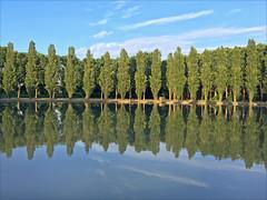 Le grand canal (Domaine de Sceaux) (dalbera) Tags: dalbera parcdesceaux sceaux france bassin reflets jardin arbres