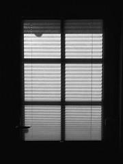 The door (FloHimself) Tags: canonpowershotg11 vsco