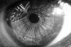 The eye (amatulow) Tags: eye ojo blanco black bw negro white monocromatico monocromatic monocromo macro macrofotografia canon eos 600d