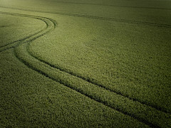 Chicane (Draws_With_Light) Tags: agriculture aerialphotography scene drone landscape eastridingofyorkshire spring season abstract djimft15mmf17asph djiinspire1pro vegetation places camera harpham england unitedkingdom gb wheatfields