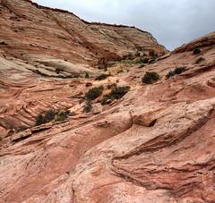 Paria New Discoveries: rock ramp decision (Chief Bwana) Tags: az arizona vermilioncliffs psa104 navajosandstone pariaplateau chiefbwana 500views