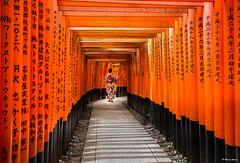 The Selfie Girl in Inari (dinero57) Tags: selfie kimono inari fushimainari shrine tori canon eos5dmarkiii osaka japan canonphotography unlimitedphotos