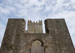Tintern Abbey (backpackphotography) Tags: tintern abbey tinternabbey ireland wexford ruin ruins backpackphotography