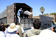 23 junio 2017 Entrega de fertilizante en parque Soria (Gobierno de Cholula) Tags: joséjuanespinosatorres luisalbertoarriaga marcelino clazadilla sanpedrocholulapuebla fertilizante siembra campo apoyo alcampo