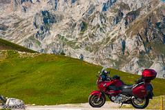 PICOS DE EUROPA. MIRADOR DEL OSO (DOCESMAN) Tags: moto bike motor motorcycle motorrad motorcykel moottoripyörä motorkerékpár motocykel mototsikl honda nt700v ntv700 deauville docesman danidoces picosdeeuropa cantabria puertodesanglorio
