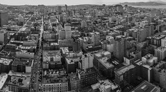 san francisco days (pbo31) Tags: bayarea california nikon d810 boury pbo31 northerncalifornia sanfrancisco over view 2017 panoramic large stitched panorama blackandwhite gray rooftops tenderloin skyline city urban hilton