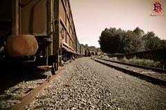 24 de junio de 2017-RRR05107 (Tres-R) Tags: españa spain galicia pontevedra tren train tresr rodolforamallo sonyrx10iii airelibre