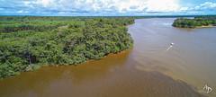 Le Maroni (alain_did) Tags: lemaroni fleuve guyane amazonie eau forêt drône pirogue voyage tourisme évasion saintlaurentdumaroni îletdeslépreux