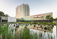 2014-03-16 - Eindhoven_TuE_DSC_0939-Edit_highres (damien fournier) Tags: tue technische universiteit eindhoven university technology netherlands