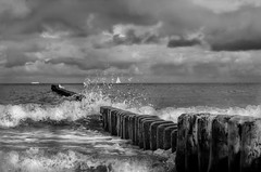 sailboat (Der Hamlet) Tags: baltic sea ostsee segelboot sailboat wellen wave bollard pollen gischt spray dunklewolken darkclouds sturm storm