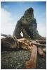 Ruby Beach, WA (kevinmarquezphoto) Tags: vuws vivitar 35mm film nature ruby beach driftwood rock
