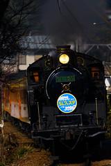 DSC9846 (nEUROn FL) Tags: locomotive shizuoka train railway oiwagarailway jnr c11 蒸気機関車 大井川鉄道 静岡県