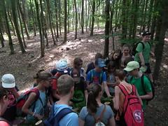 WaldjugendSpLMJuni2017-005