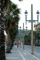 DSC05198 (arden.demirci) Tags: barcelona ispanya spain katalonya cataluña catalunya catalonha barselona picture sony travel traveler photographer photo love holiday madrid