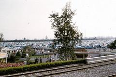 Crowded Disneyland parking lot (Tom Simpson) Tags: vintage disney disneyland vintagedisney parkinglot 1960s railroad