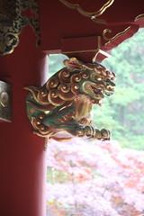 IMG_2632 (normafincher) Tags: japan nikko nikkonationalpark