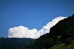 White cloud (Wim Ederveen) Tags: blackforest schwarzwald germany deutschland wood wald zwartewoud duitsland bomen wolken clouds